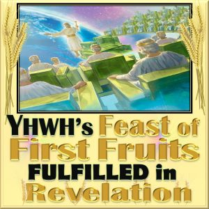 """Feast of FirstFruits,Feast of First Fruits,First Fruits,Firstfruits,celebrating,Passover,unleavened bread,feast of Passover,feast of unleavened bread,pesach,Nissan,first born,firstborn,Shavuot,feast of weeks,sefirah,counting the omer,spring feasts,144000,Christ,1st resurrection,first resurrection,7 Feasts,Book of Revelation,fulfilled,meaning,copy,shadow,forshadow,pattern,fulfillment,bride,new Jerusalem,levi,tribe of levi,priests,kings,judges,priest,king,judges,wife of the lamb,heavenly Jerusalem,Jerusalem above,Jerusalem,Israelof the LAMB."""" Revelation 21:9,Bride,wife of the LAMB,Revelation 21:14,twelve apostles of the LAMB,"""