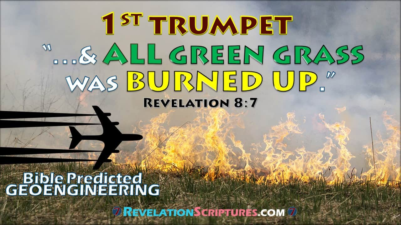 First Trumpet,1st Trumpet,Trumpet 1,1st Trumpet Revelation,Interpretation,Biblical,Scriptural,1st Trumpet,Hail,Fire,Blood,All Grass Burnt,Green Grass Burnt up,Green Grass burning,Green grass dead,Green grass dying,dead grass,dying grass,burning grass,Harvest Fail,crop fail,drought,famine,hunger,starving,birth pains,beginning of Pangs of distress,malnutrition,food security,food scarcity,all of the Green Grass was burnt up,Third Trees Burnt,1/3 trees burnt,trees burnt,treed burning,trees on fire,burning forest,forest fire,forest dying,dead forest,withering trees,Third Earth,1/3rd of the earth burnt up,Burnt,Seven Trumpets,7 Trumpets,Book of Revelation,Revelation 8,Revelation Chapter 8,Apocalypse,End times,Last Days,Fulfillment of Revelation,fulfillment of Bible Prophesy,fulfillment of prophesy,fulfillment of the 1st trumpet,Geoengineering,Bible Predicted Geoengineering,Geoengineering and the Bible,Geoengineering and Prophesy,Geoengineering and the Book of Revelation,Geoengineering and the 1st Trumpet,Chemtrail,stratospheric aerosol,climate,Alumnium,strontinium,barium,biological warfare,climate change,weather,weather modification,weather control,weather weapon,radio frequency,haarp,ocean acidification,military,solar radiation management,SRM,SRI,david keith,Dane Wigington,aerosol injection,ozone layre,Toxic rain,global warming,climate engineering,cloud seeding,Tree die-off,methane,global meltdown,jet spraying,trees die,forest dead,dead,forest,dieing forest,withering trees,UVradiation,Hydrological cycle,