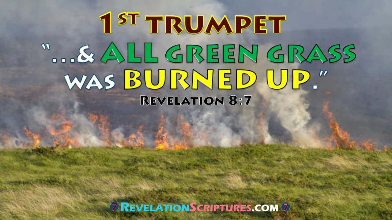 First Trumpet,1st Trumpet,Trumpet 1,1st Trumpet Revelation,Interpretation,Biblical,Scriptural,1st Trumpet,Hail,Fire,Blood,All Grass Burnt,Green Grass Burnt up,Green Grass burning,Green grass dead,Green grass dying,dead grass,dying grass,burning grass,Harvest Fail,crop fail,drought,famine,hunger,starving,birth pains,beginning of Pangs of distress,malnutrition,food security,food scarcity,all of the Green Grass was burnt up,Third Trees Burnt,1/3 trees burnt,trees burnt,treed burning,trees on fire,burning forest,forest fire,forest dying,dead forest,withering trees,Third Earth,1/3rd of the earth burnt up,Burnt,Seven Trumpets,7 Trumpets,Book of Revelation,Revelation 8,Revelation Chapter 8,Apocalypse,End times,Last Days,Fulfillment of Revelation,fulfillment of Bible Prophesy,fulfillment of prophesy,fulfillment of the 1st trumpet