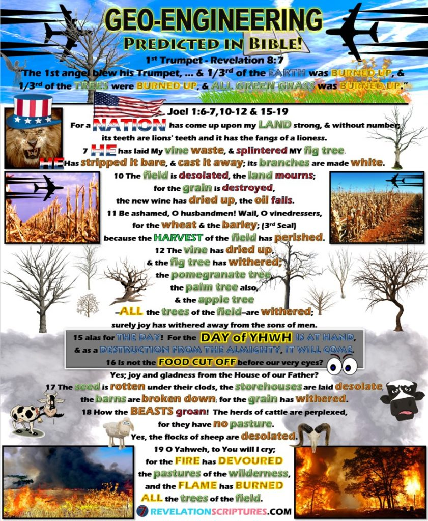 Geoengineering Predicted in the Bible,Geoengineering & Bible Prophesy,Bible predicted Geoengineering, First Trumpet,1st Trumpet,1st Trumpet fulfillment & Geoengineering, Joel 1,Joel Chapter 1,trees dying,trees burnt up,third of trees burnt,All green grass burnt,green grass,burning,book of revelation,climate change,global warming,drought,famine,birth pains,beginning of birth pains