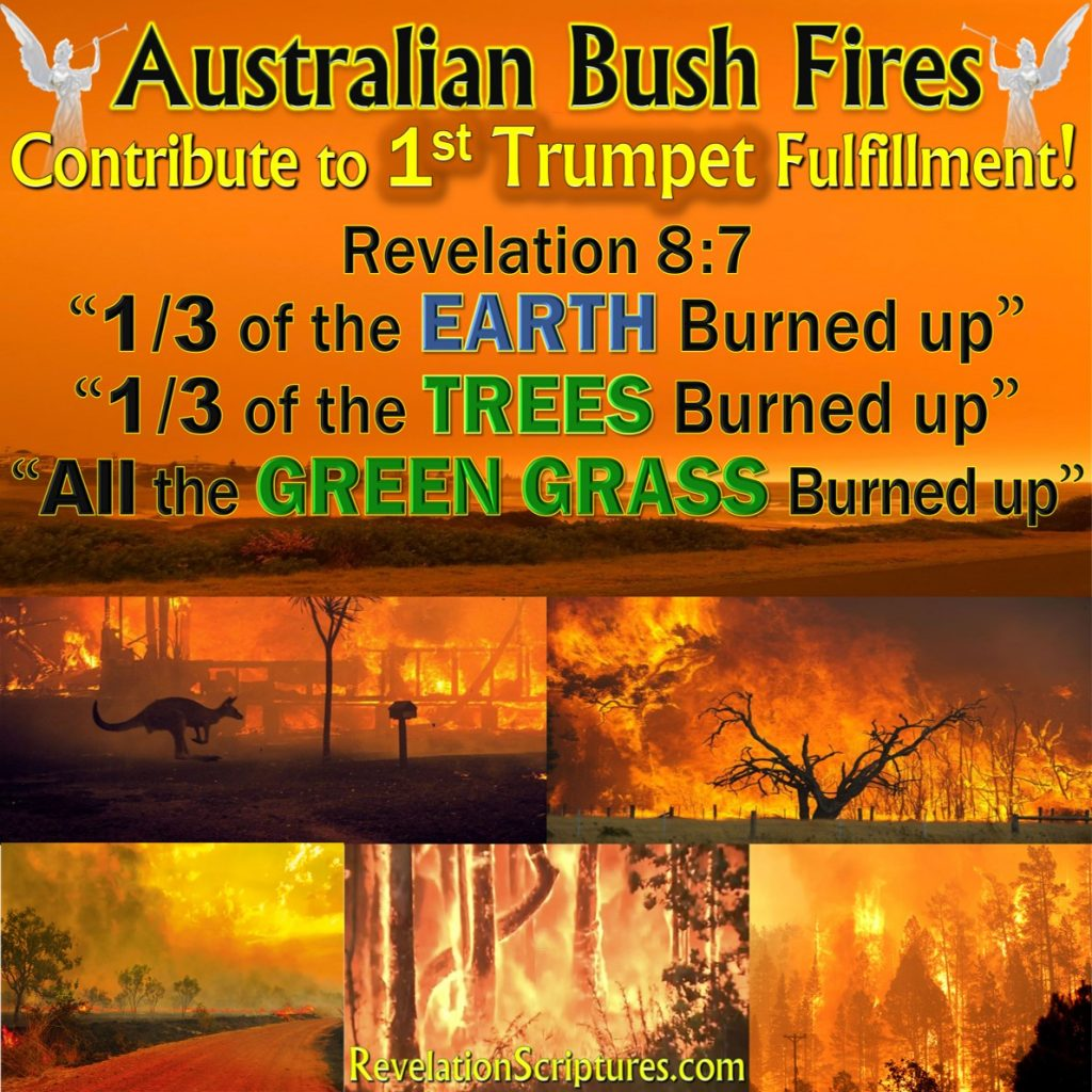 Australia Fire,1st Trumpet,first trumpet,first trumpet Revelation,1st Trumpet Revelation,trees burned,third treed burned,trees burned up,Revelation 8:7,fulfillment 1st Trumpet,1st Trumpet fulfillment,fulfillment