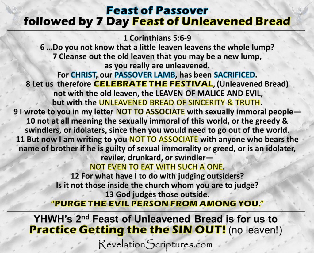 Pesach,firstborn,first born,pass over,leaven,Seder,meals,Seder Supper,wine,matzah,bitter herbs,roasted lamb,Exodus,Lamb,Occurs 24 Times,Book of Revelation,Passover,Revelation 5:6, I saw a LAMB,as though it had been slain,seven horns,seven eyes,seven spirits of God, sent out into all the earth,Revelation 5:8scroll, the four living creatures and the twenty-four elders fell down before the LAMB,Revelation 5:12,Worthy is the LAMB who was slain, to receive power and wealth and wisdom and might and honor and glory and blessing,Revelation 5:13,To him who sits on the throne and to the LAMB, be blessing and honor and glory and might forever and ever,Revelation 6:1, LAMB opened one of the seven seals,Revelation 6:16, Fall on us and hide us from the face of him who is seated on the throne,the wrath of the LAMB,Revelation 7:9, After this I looked, and behold, a great multitude that no one could number, from every nation, from all tribes and peoples and languages, standing before the throne and before the LAMB, clothed in white robes, with palm branches in their hands,Revelation 7:10,and crying out with a loud voice,Salvation belongs to our God who sits on the throne,and to the LAMB,Revelation 7:14,They have washed their robes and made them white in the blood of the LAMB,Revelation 7:17,For the LAMB in the midst of the throne will be their shepherd, and he will guide them to springs of living water, and God will wipe away every tear from their eyes,Revelation 8:1, When the LAMB opened the seventh seal,Revelation 12:11,And they have conquered him by the blood of the LAMB,and by the word of their testimony, for they loved not their lives even unto death,Revelation 13:8,the book of life of the LAMB,Revelation 13:11,two horns like a LAMB,spoke like a dragon,Revelation 14:1,Mount Zion,stood the LAMB,with him 144,000,Revelation 14:4,follow the LAMB wherever he goes,firstfruits for God and the LAMB,Revelation 14:10,tormented with fire and sulfur,presence of the holy angels,in the prese