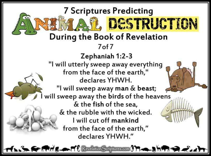 [Image: Seven-Scriptures-Predicting-the-Destruct...784569.jpg]